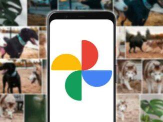Come scaricare tutte le tue foto da Google Foto